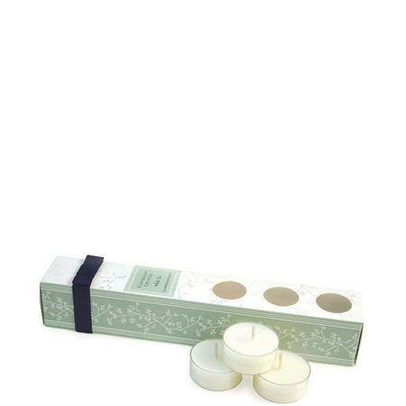 White Tea 12 Pack Nightlight Candle Set