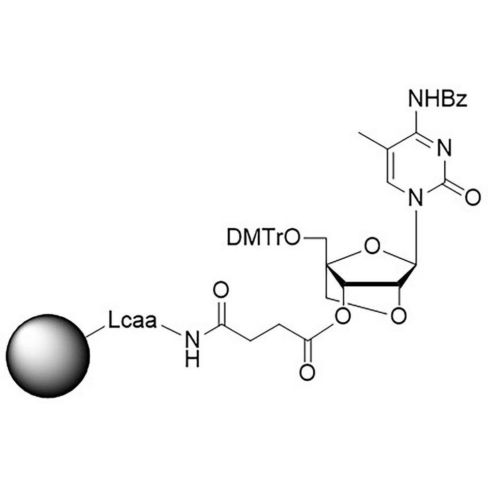 LNA-C(5-Me) (Bz) CNA CPG Low Bulk Density, 600 Å, 80-90 µmol/g, BULK (g)