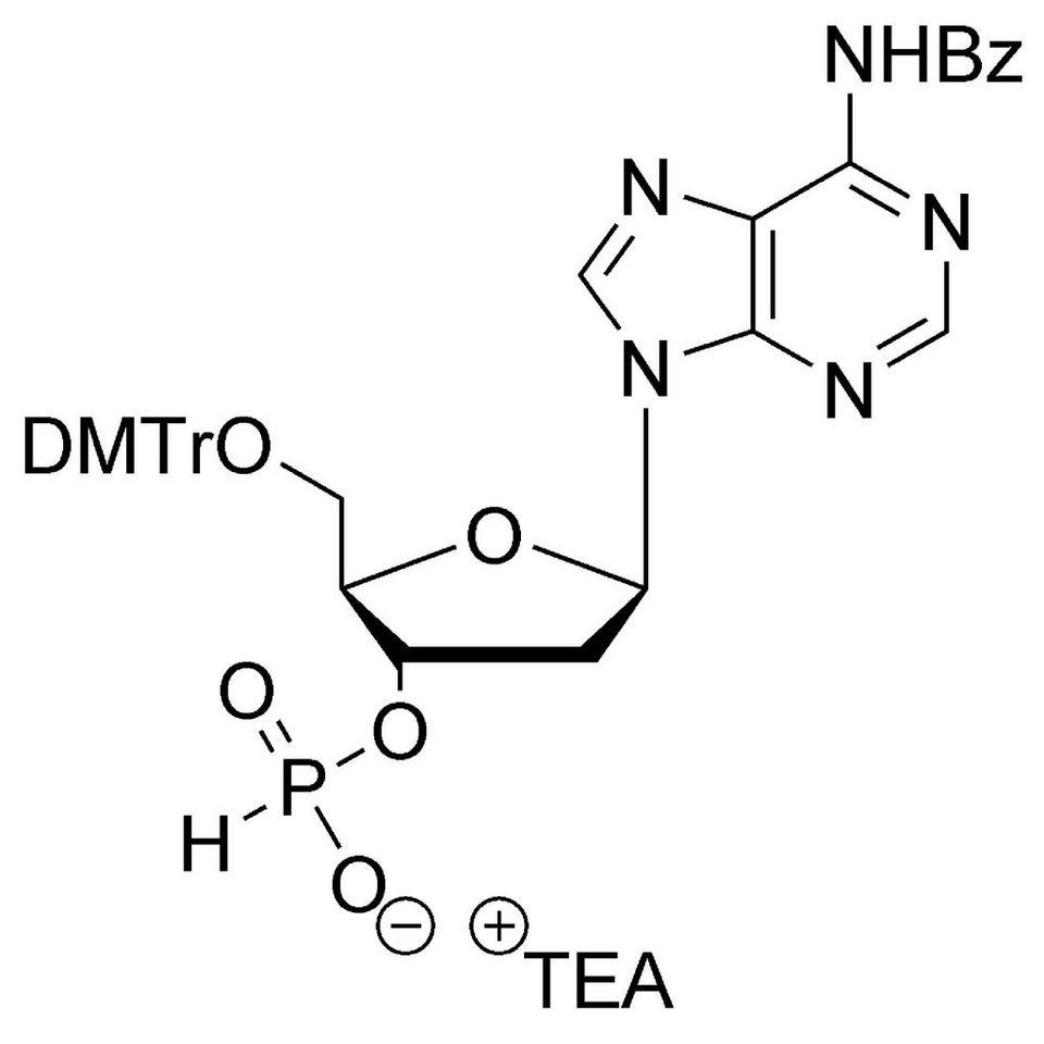 dA (Bz) H-Phosphonate TEA salt