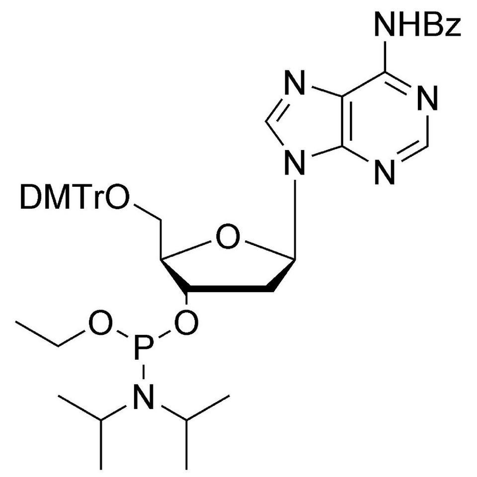 dA (Bz) Et-Phosphoramidite