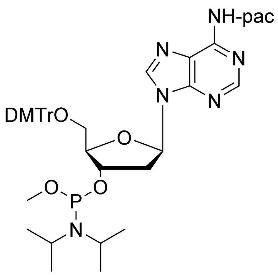 dA (Pac) Me-Phosphoramidite