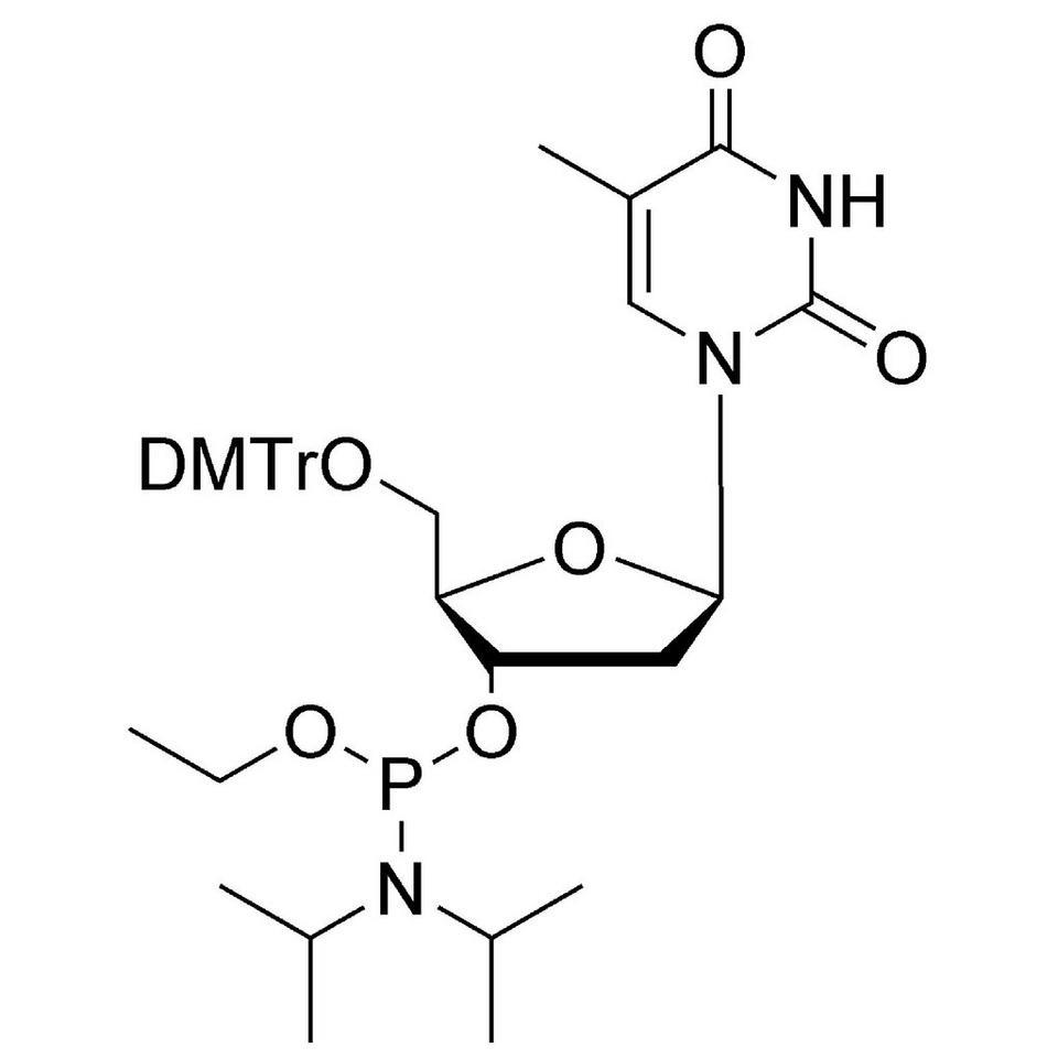 dT Et-Phosphoramidite