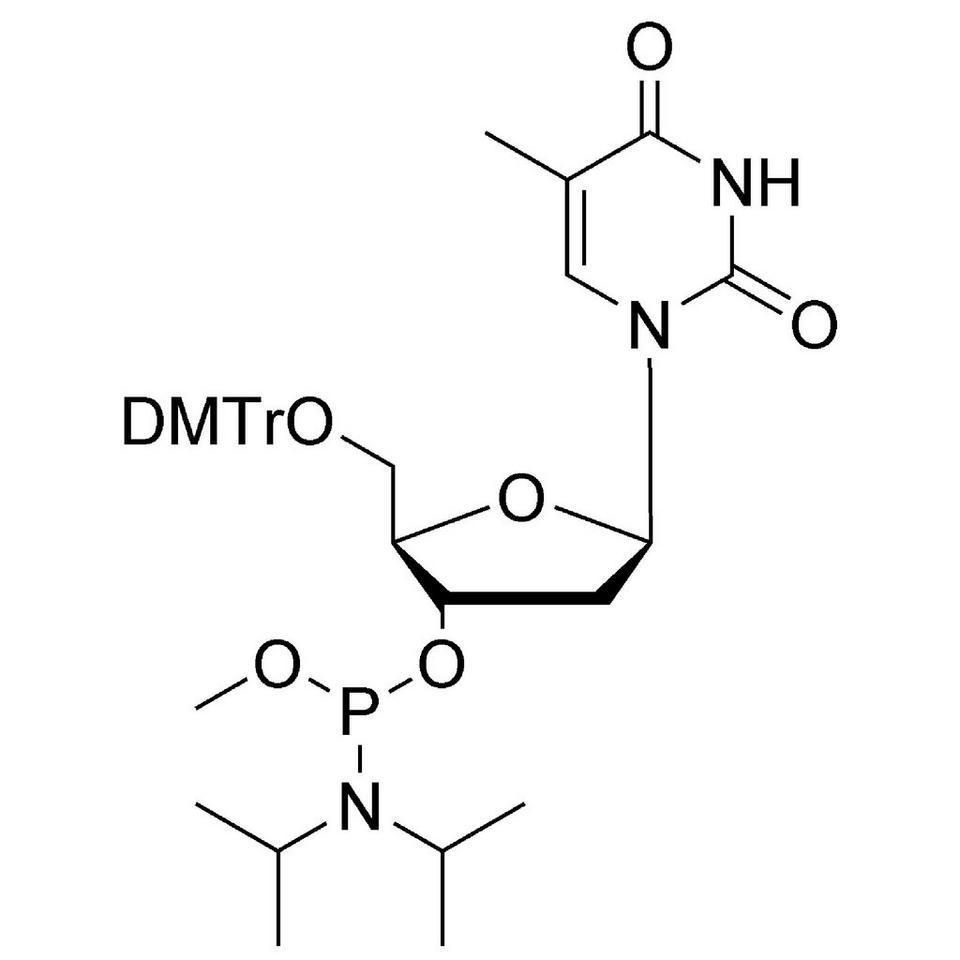 dT Me-Phosphoramidite