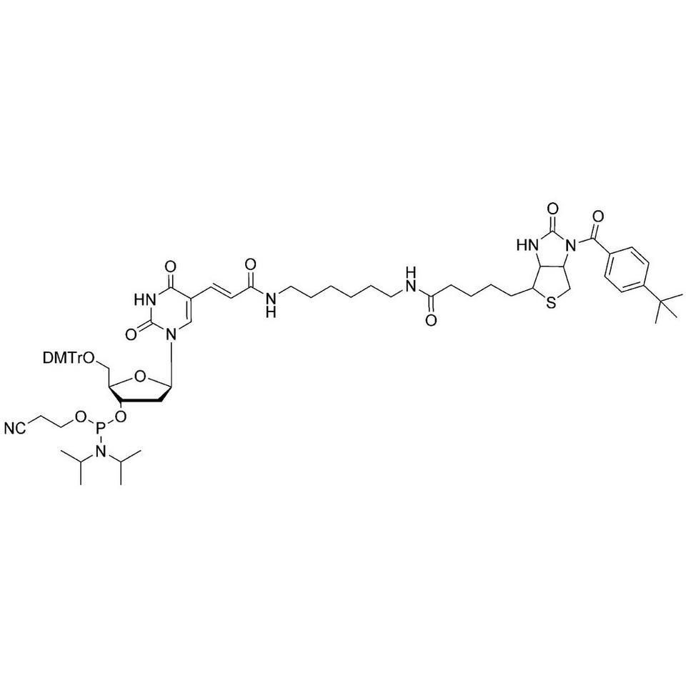 Biotin-dT CE-Phosphoramidite