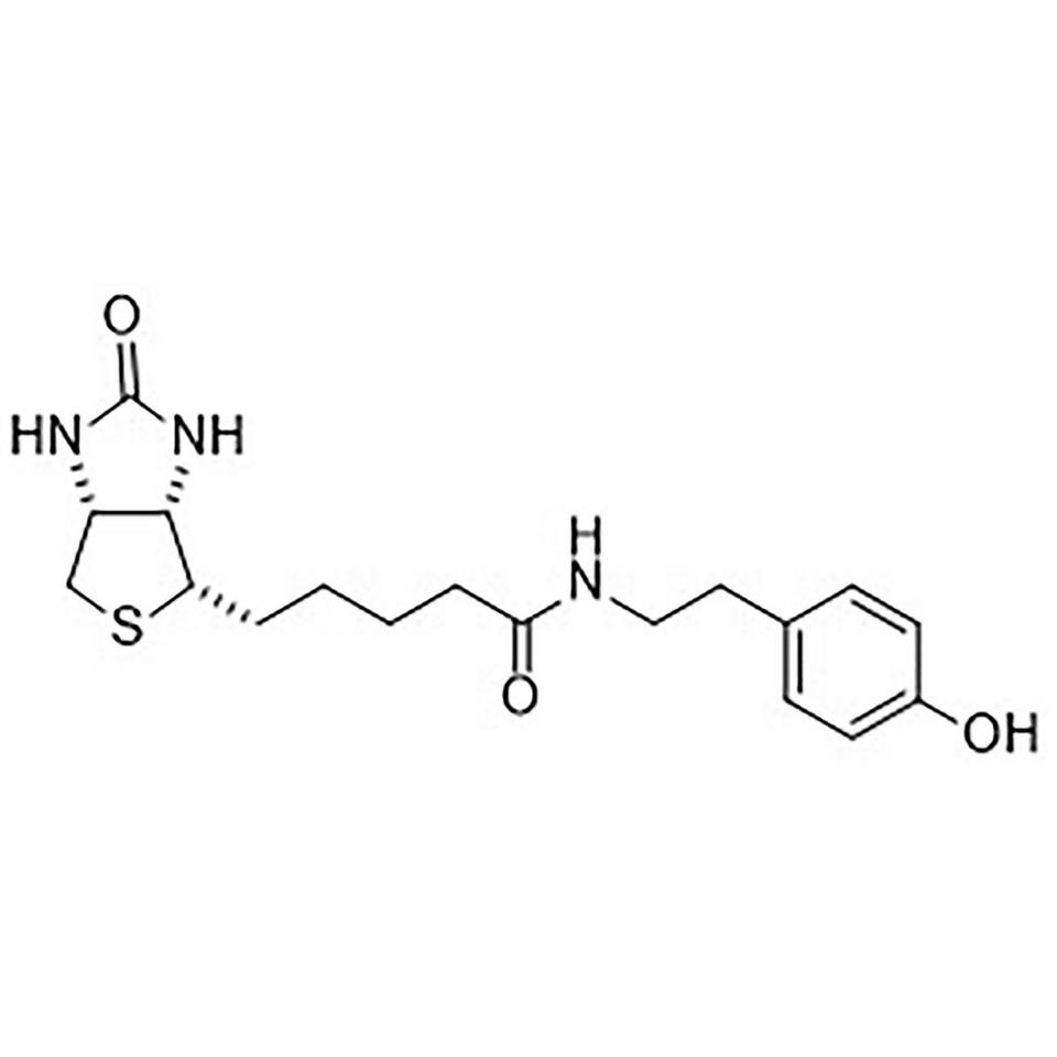 D-(+)-Biotin-tyramine amide