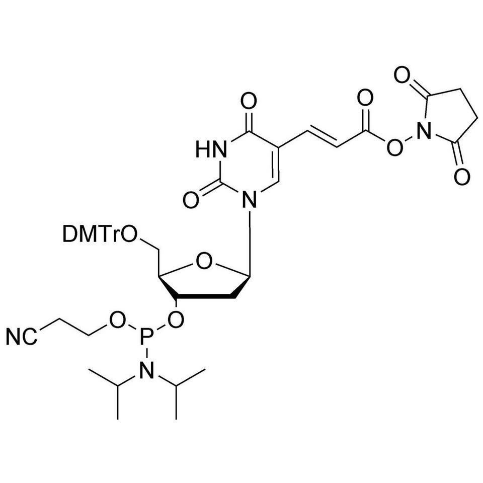 NHS-Carboxy-dT CE-Phosphoramidite, BULK (g), Glass Screw-Top
