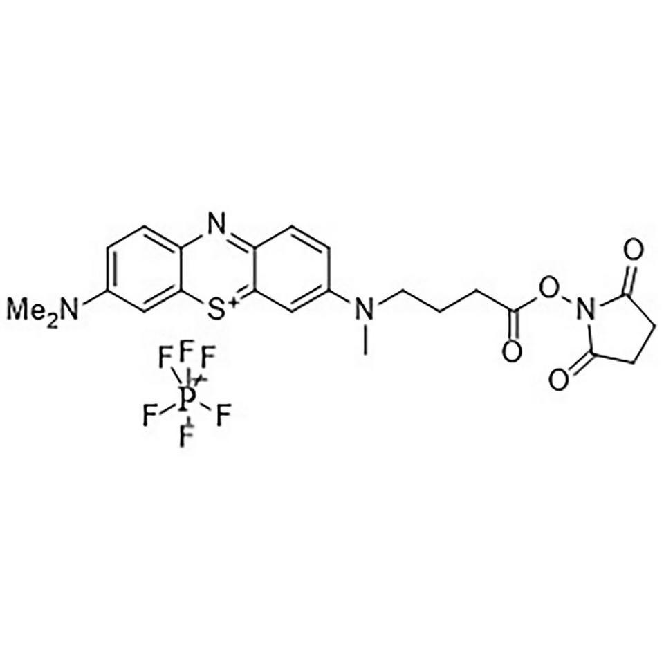 Methylene Blue, Carboxylic Acid, Succinimidyl Ester, 5 mg, ABI (5 mL / 20 mm Septum)