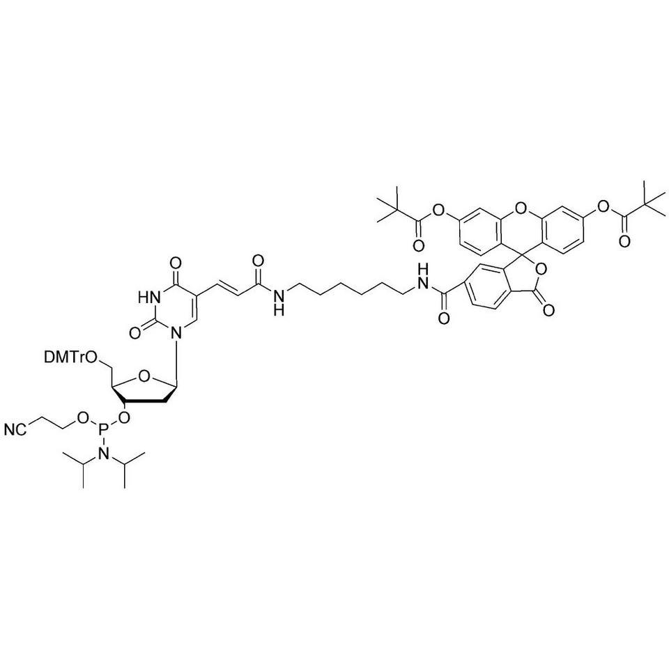 Fluorescein-dT CE-Phosphoramidite