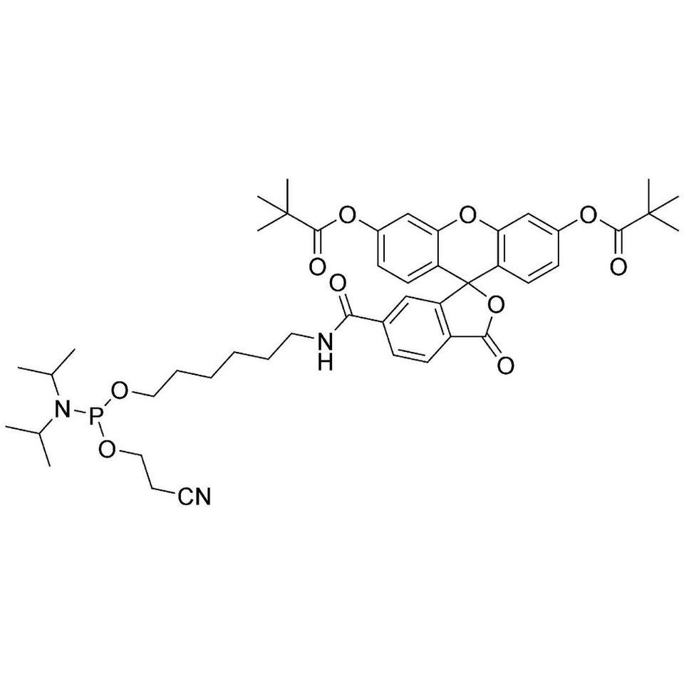 5'-Fluorescein CE-Phosphoramidite (6-FAM)