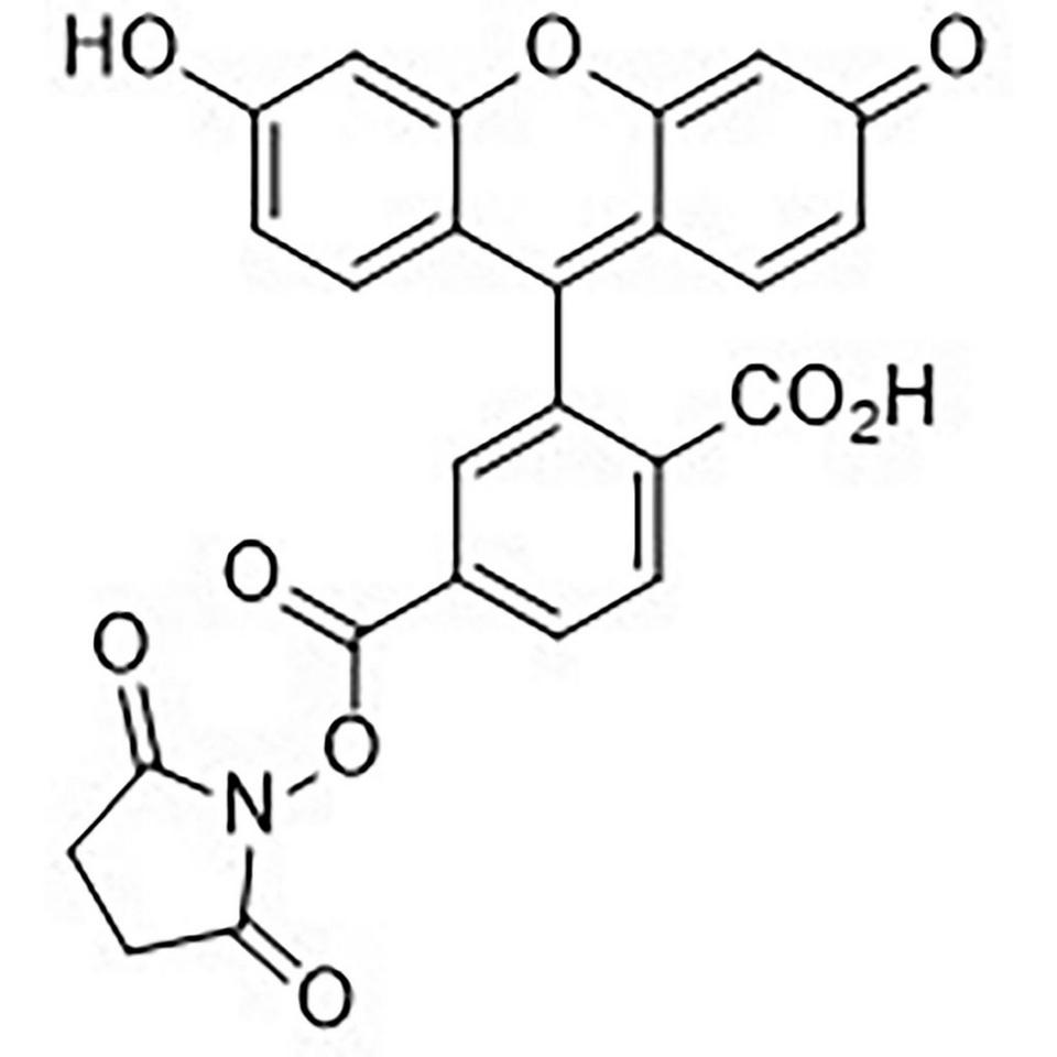 6-Carboxyfluorescein N-Hydroxysuccinimide Ester