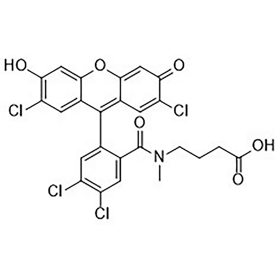 CAL Fluor Gold 540 Carboxylic Acid
