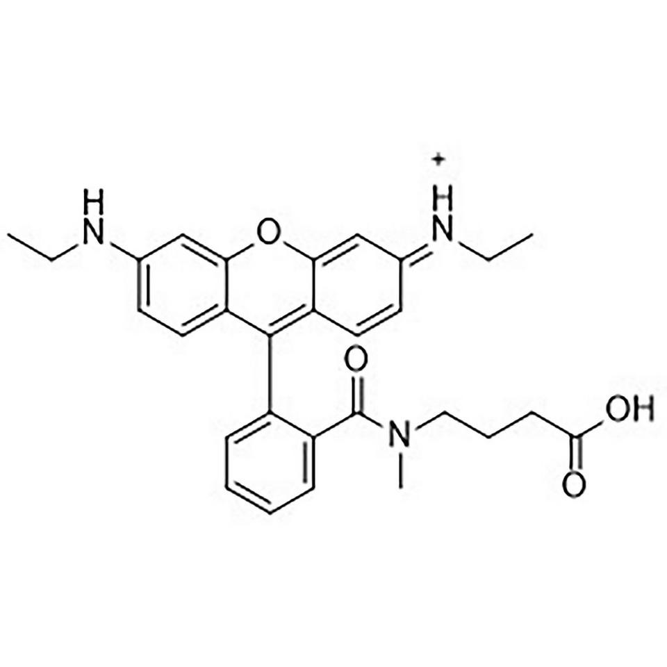 CAL Fluor Orange 560 Carboxylic Acid