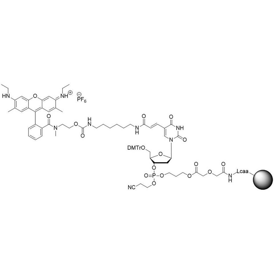 CAL Fluor Orange 560 CPG (5'-DMT-T(C6-CAL Fluor Orange 560)-Glyc-CPG)