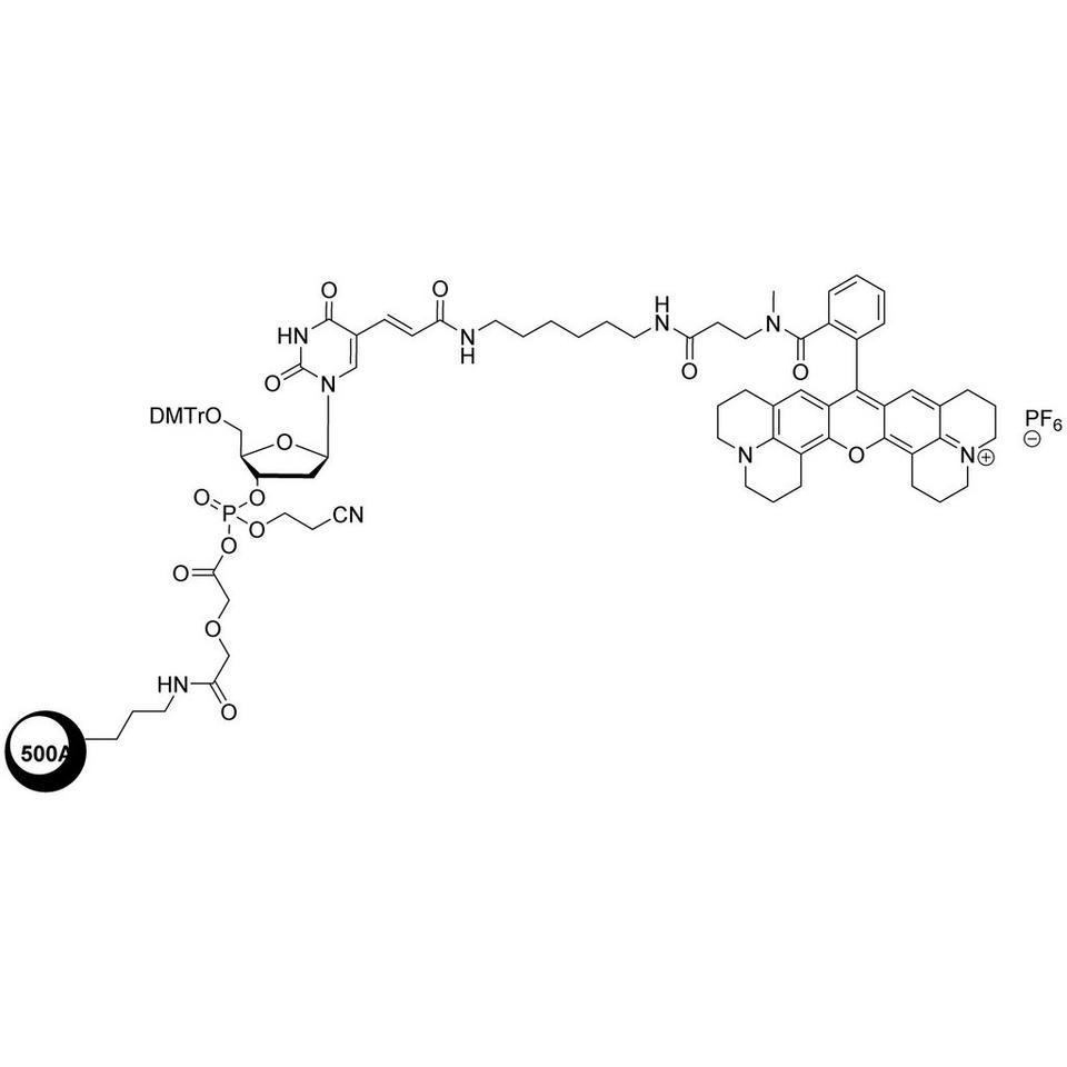 CAL Fluor Red 610 CPG (5'-DMT-T(C6-CAL Fluor Red 610)-Glyc-CPG)