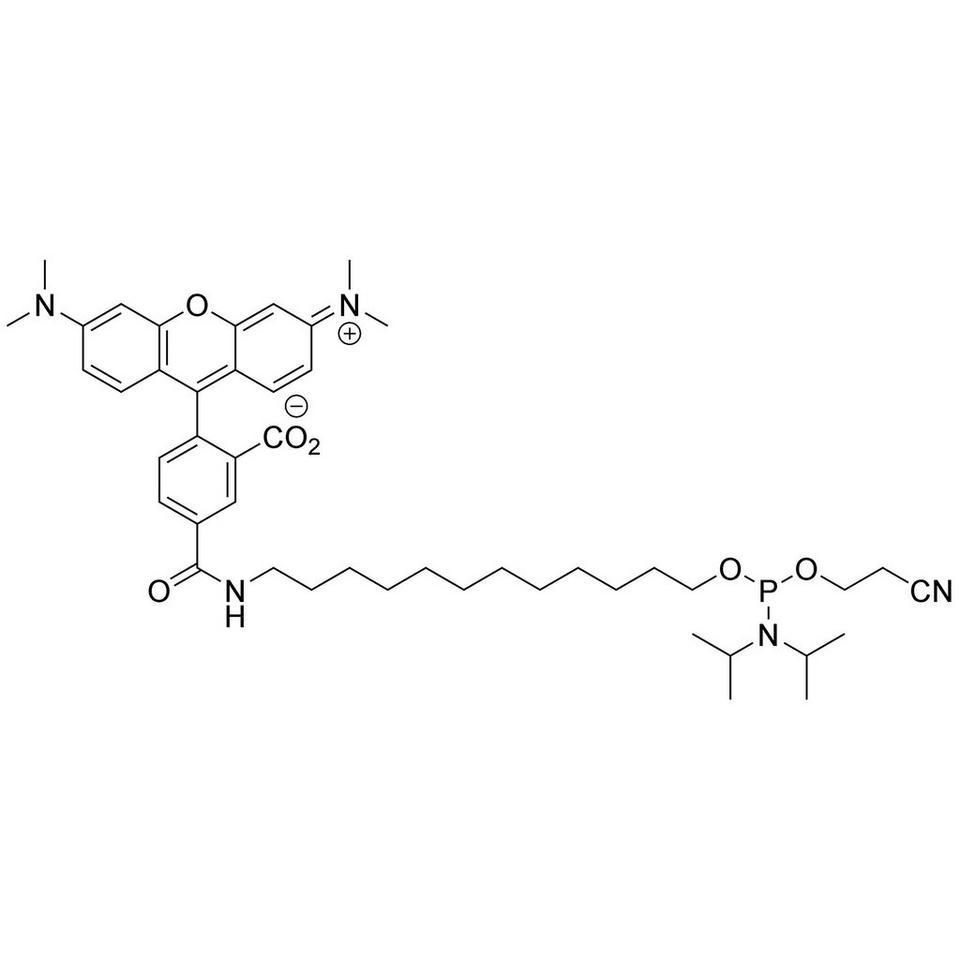 5'-TAMRA C12 Amidite (5-Isomer)