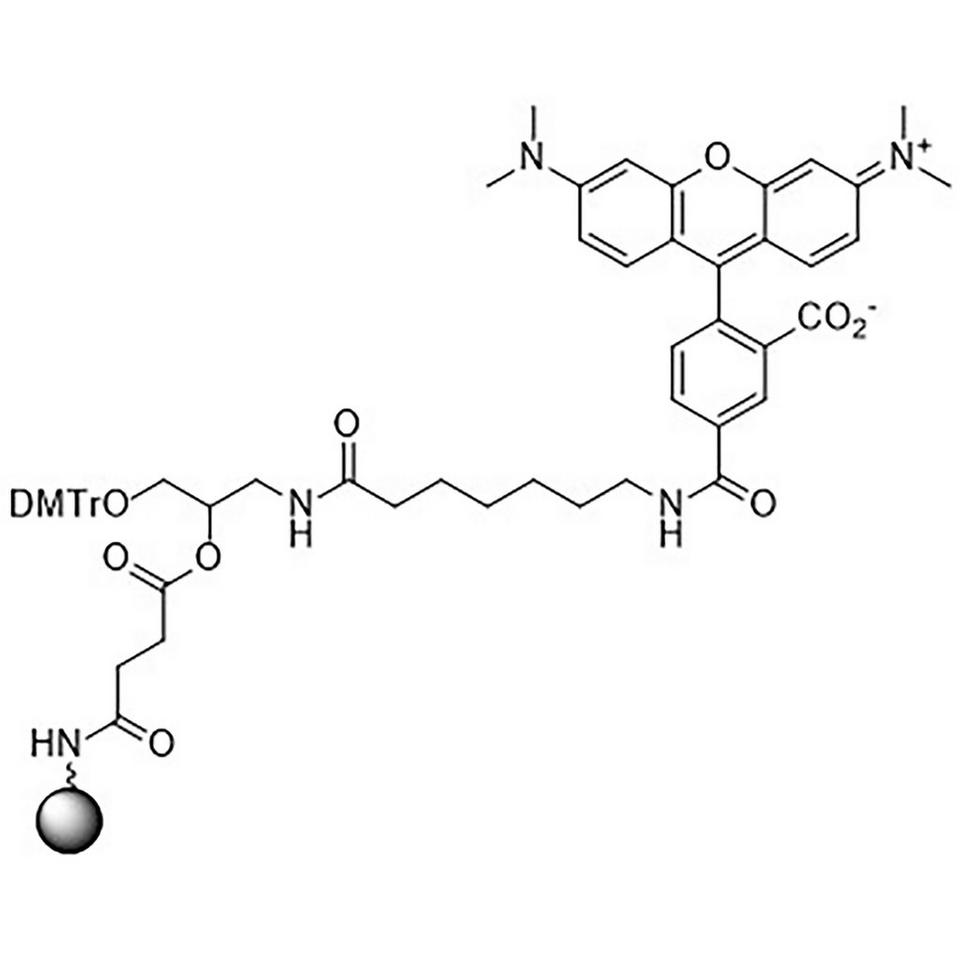 TAMRA-C9-Suc-CPG, 5-Carboxy Single Isomer