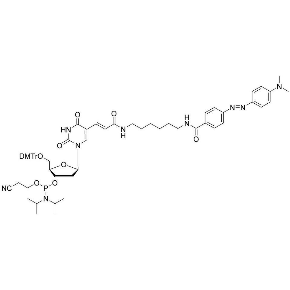 Dabcyl-dT CE-Phosphoramidite