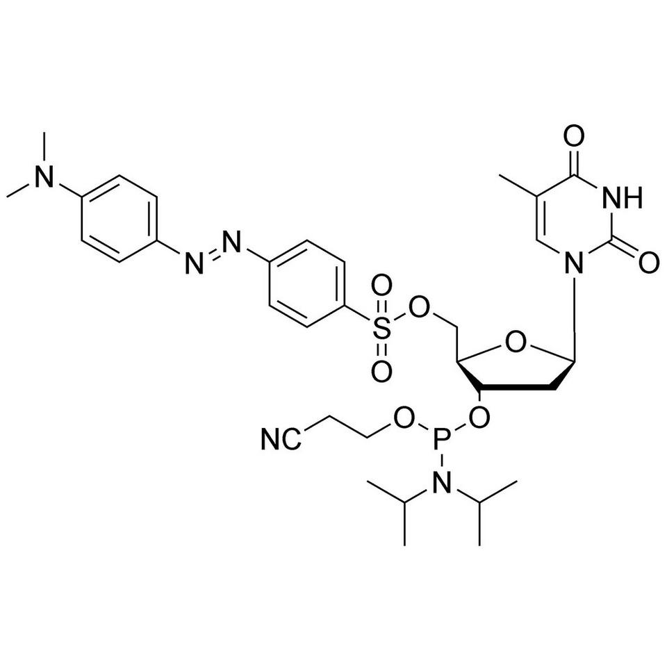5'-O-Dabsyl-T CE-Phosphoramidite