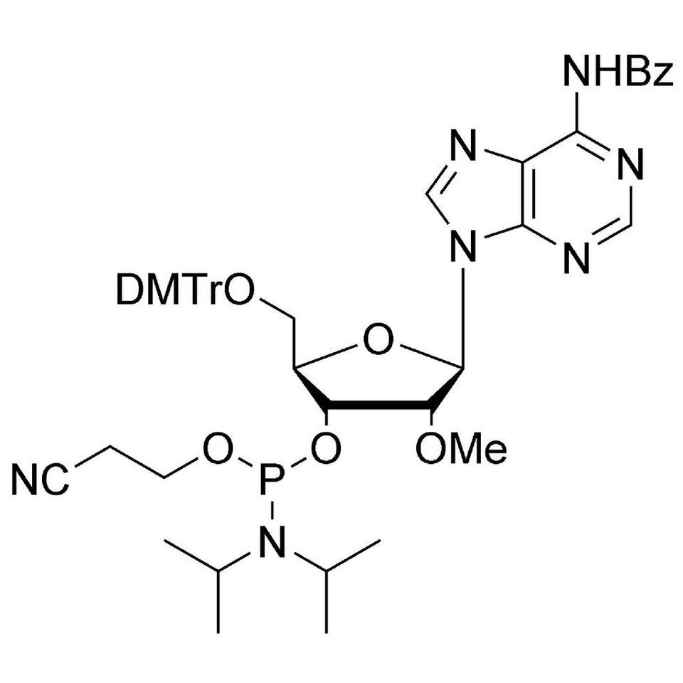 2'-OMe-A (Bz) CE-Phosphoramidite