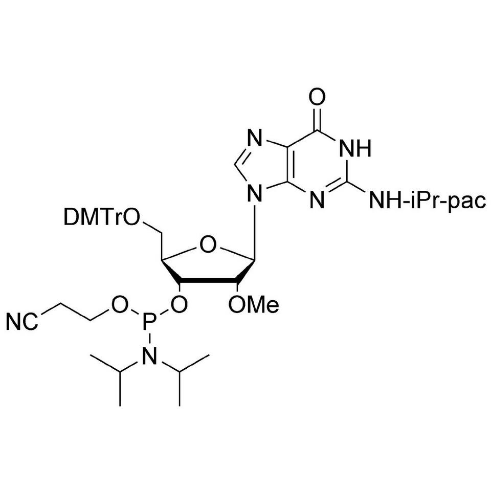 2'-OMe-G (iPr-Pac) CE-Phosphoramidite