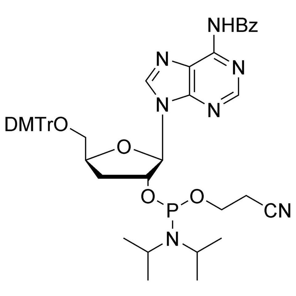 3'-dA CE-Phosphoramidite, BULK (g), Glass Screw-Top
