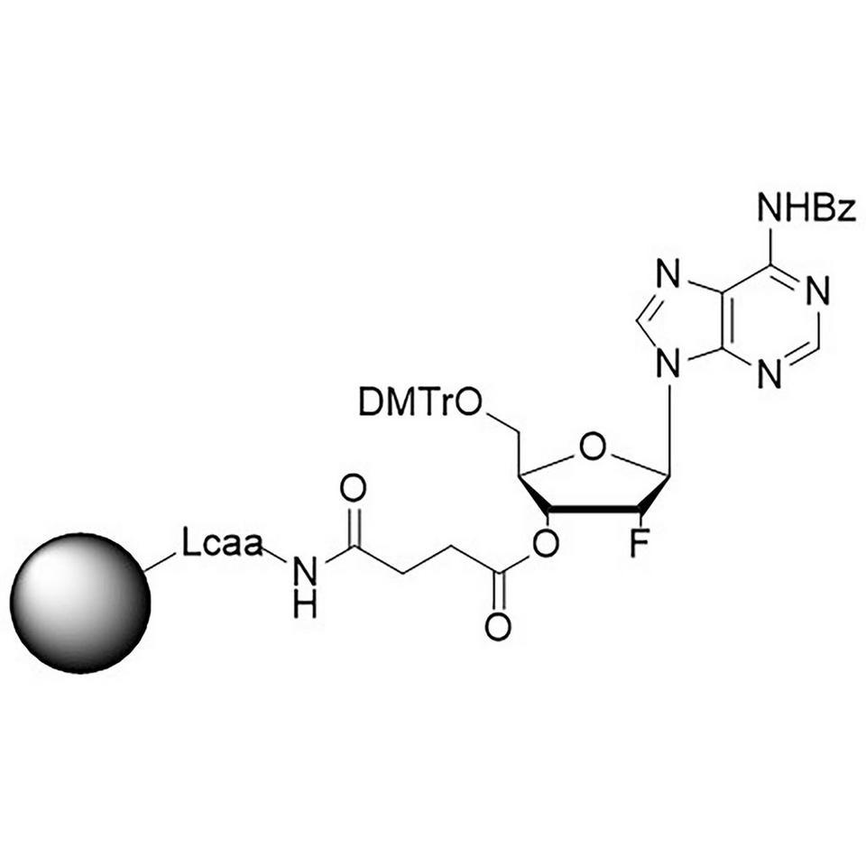 2'-Fluoro A (Bz) CNA CPG, Hybrid Column, 600 Å, 1 µmol, Hybrid