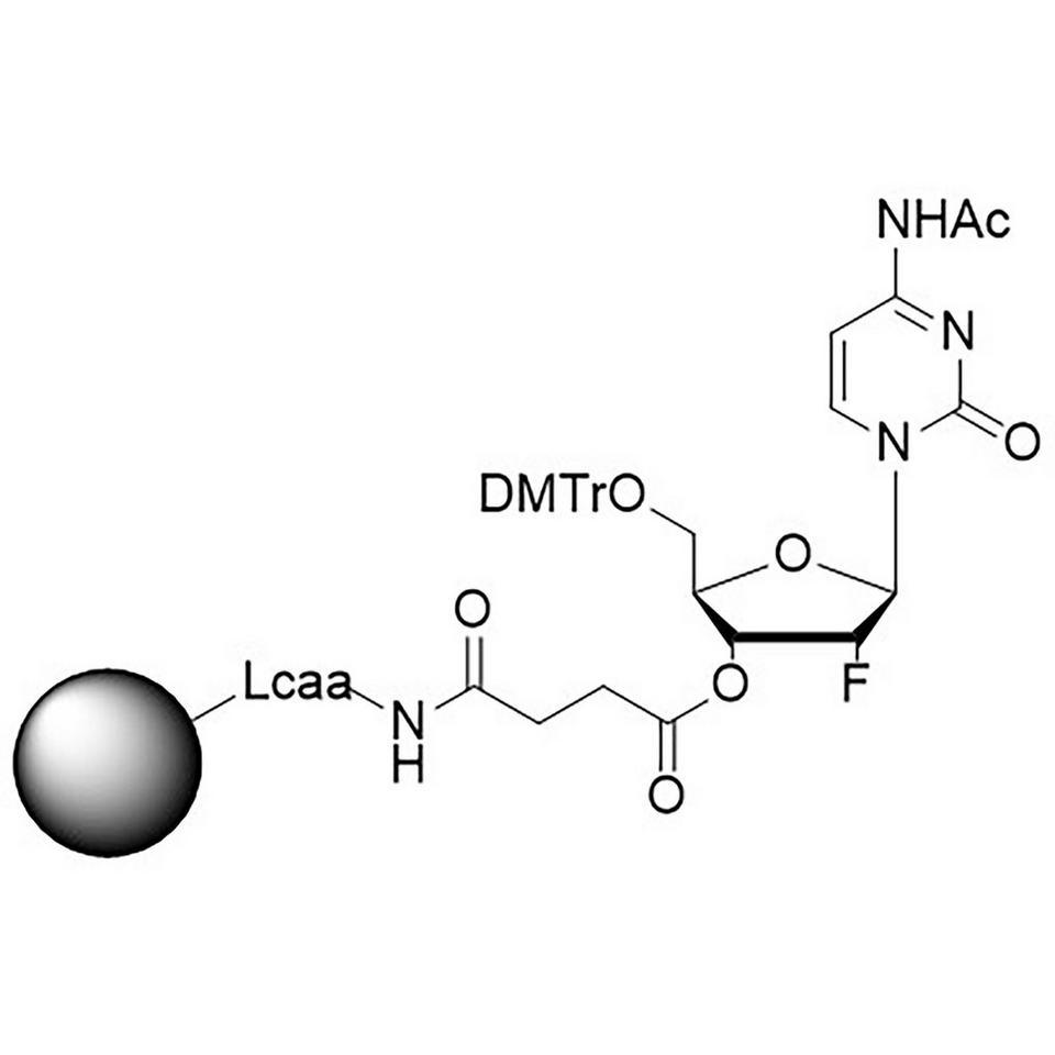 2'-Fluoro C (Ac) CNA CPG, Hybrid Column, 600 Å, 1 µmol, Hybrid