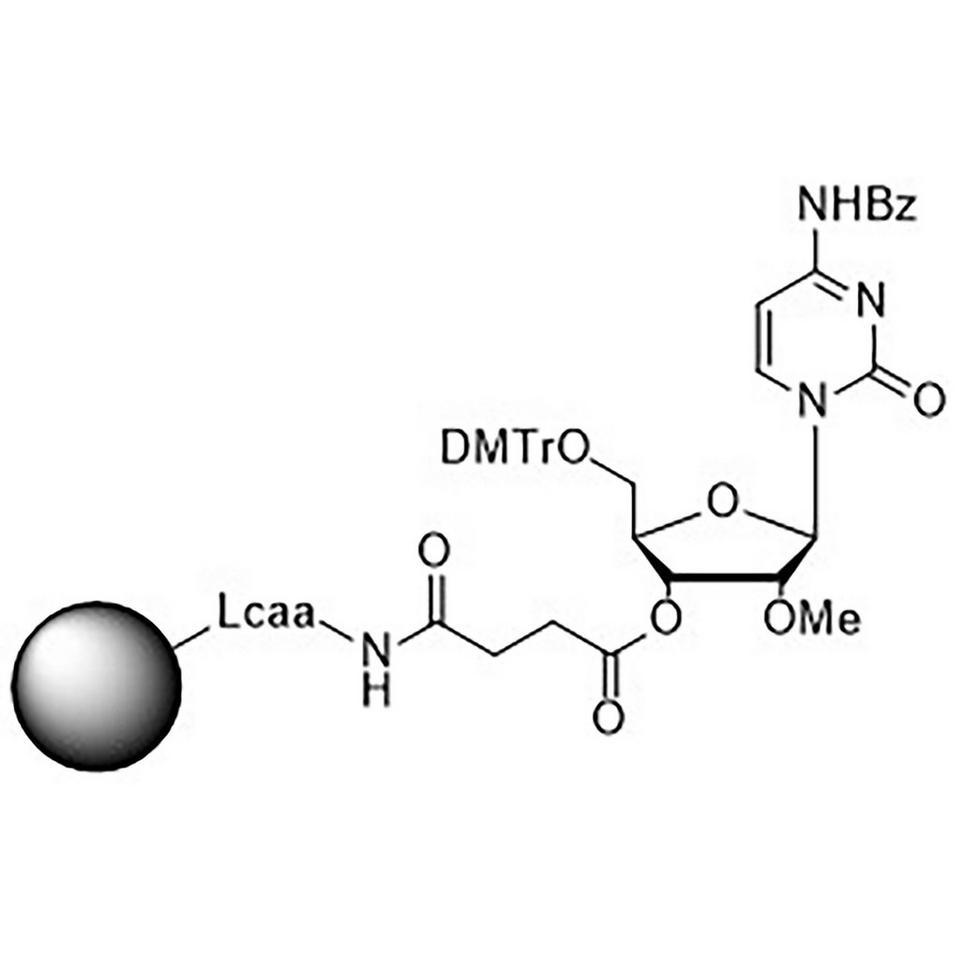 2'-O-Methyl-rC (Bz)-Suc-CPG Column