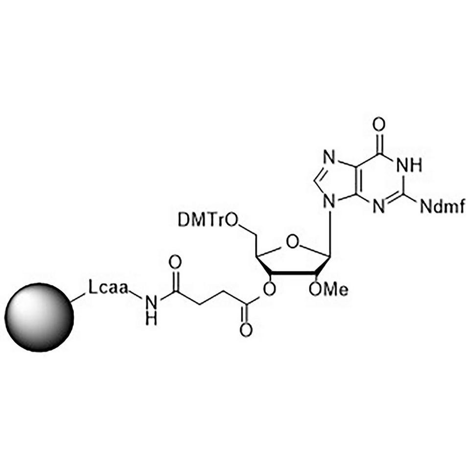 2'-O-Methyl-rG (iBu)-Suc-CPG Column
