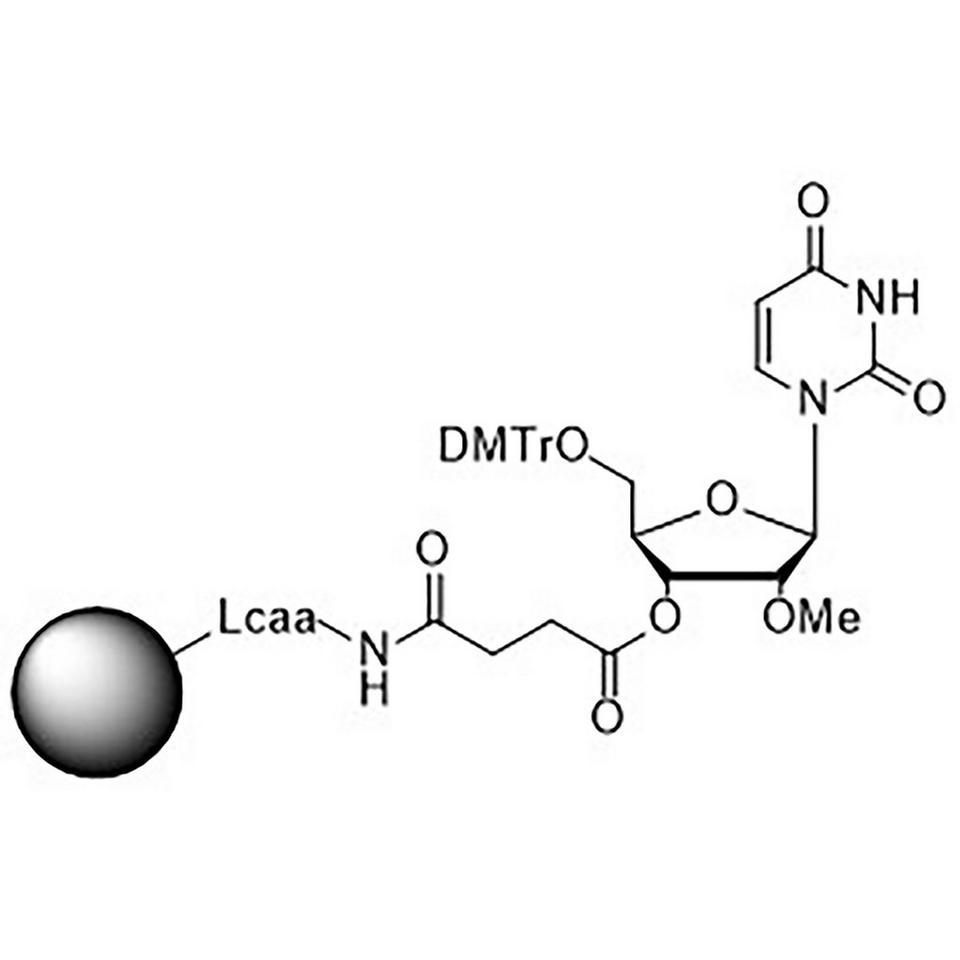 2'-O-Methyl-U-Suc-CPG Column