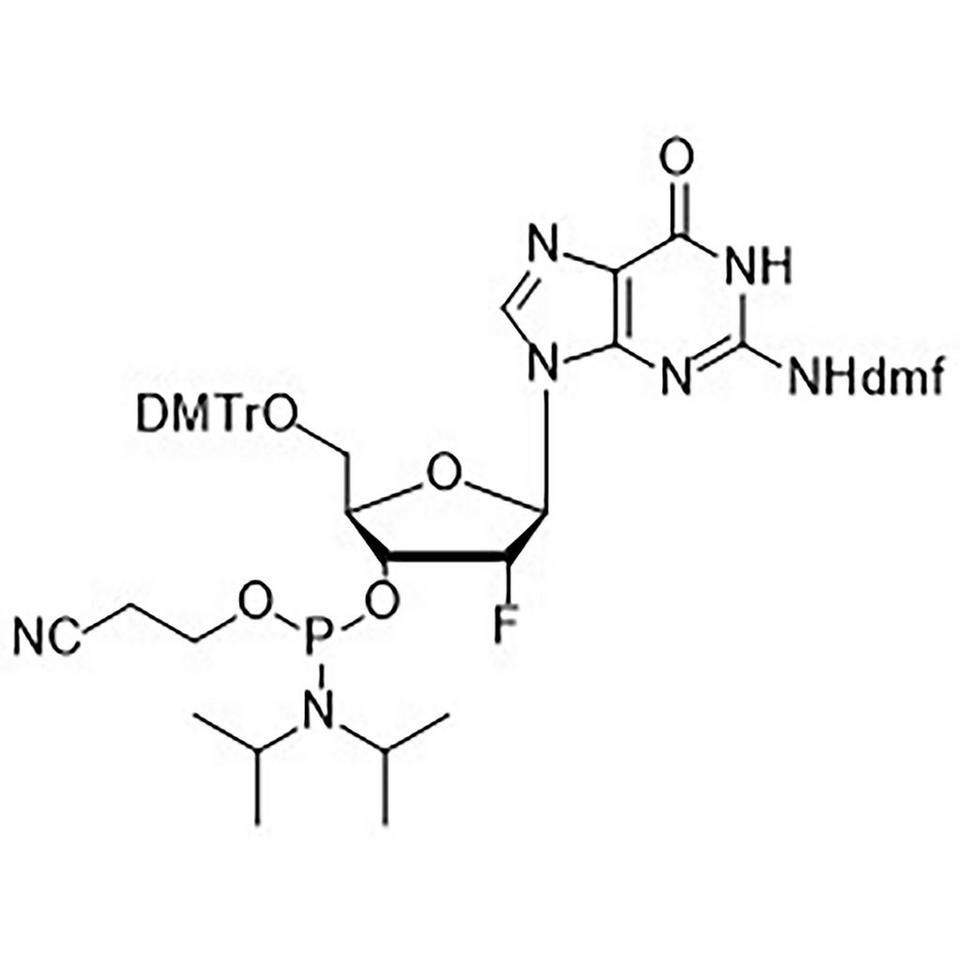 2'-F-G (dmf) CE-Phosphoramidite