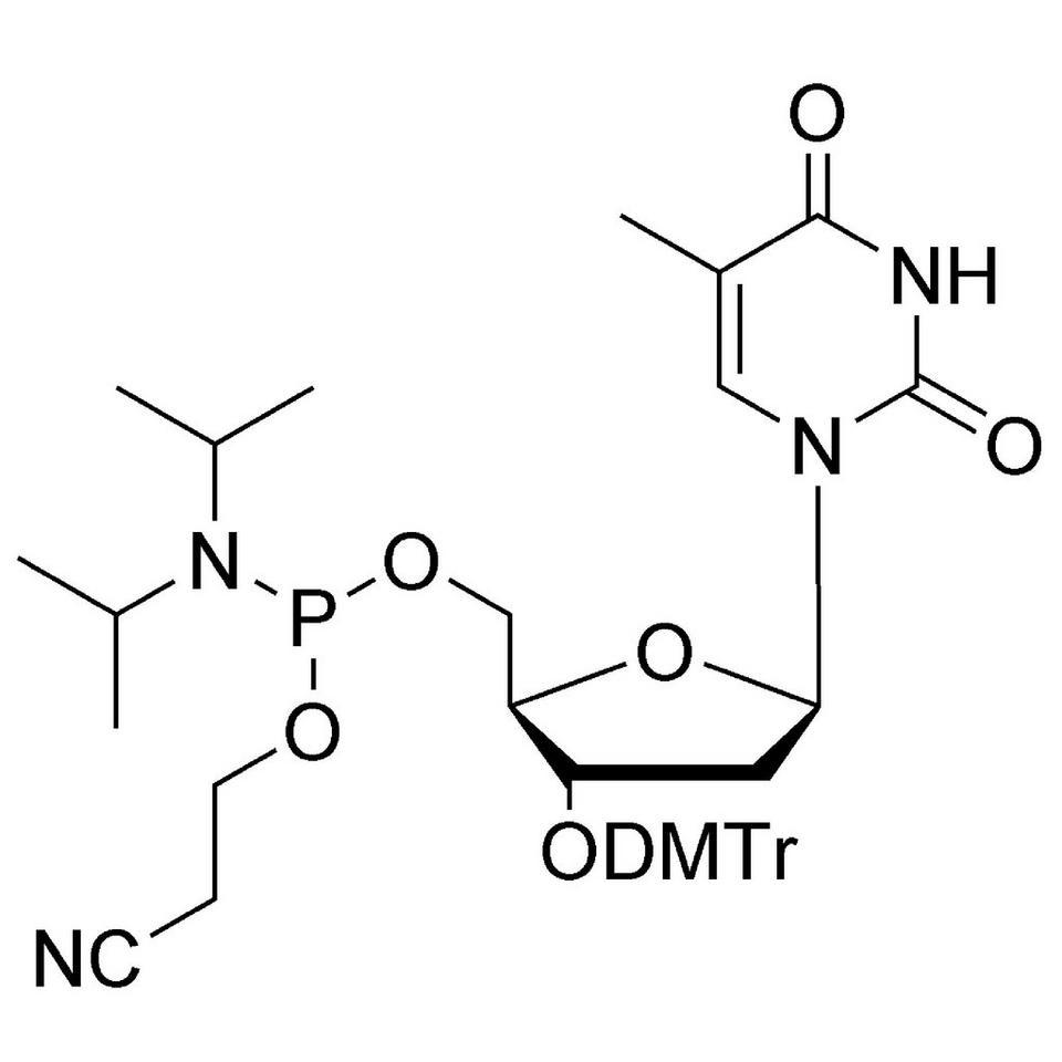 dT-5' CE-Phosphoramidite