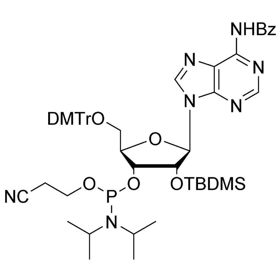 rA (Bz) CE-Phosphoramidite