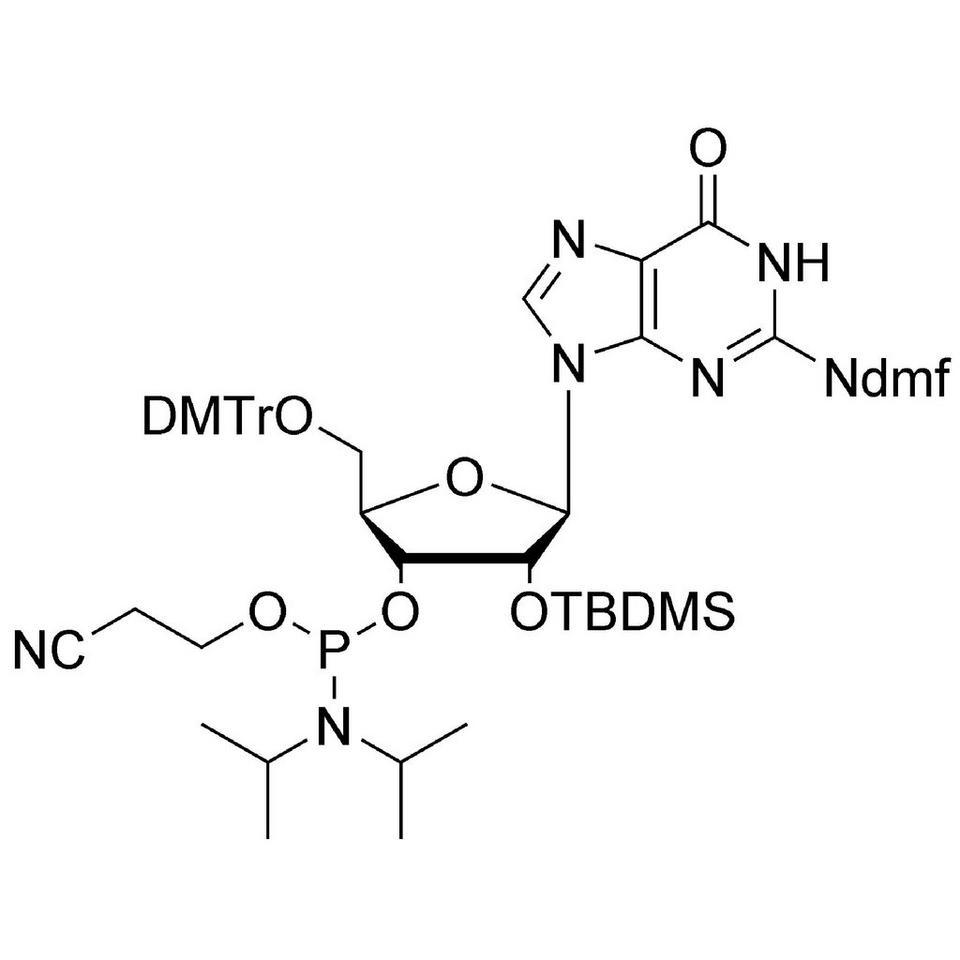 rG (dmf) CE-Phosphoramidite