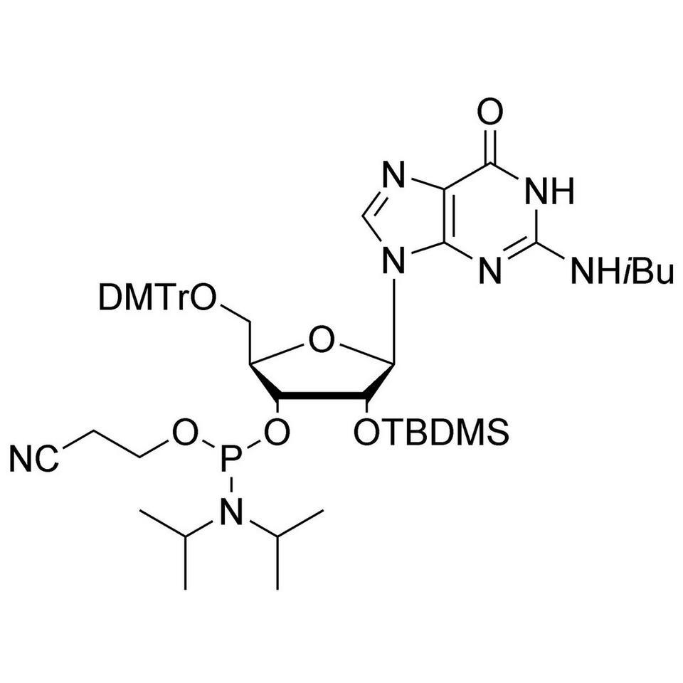 rG (iBu) CE-Phosphoramidite