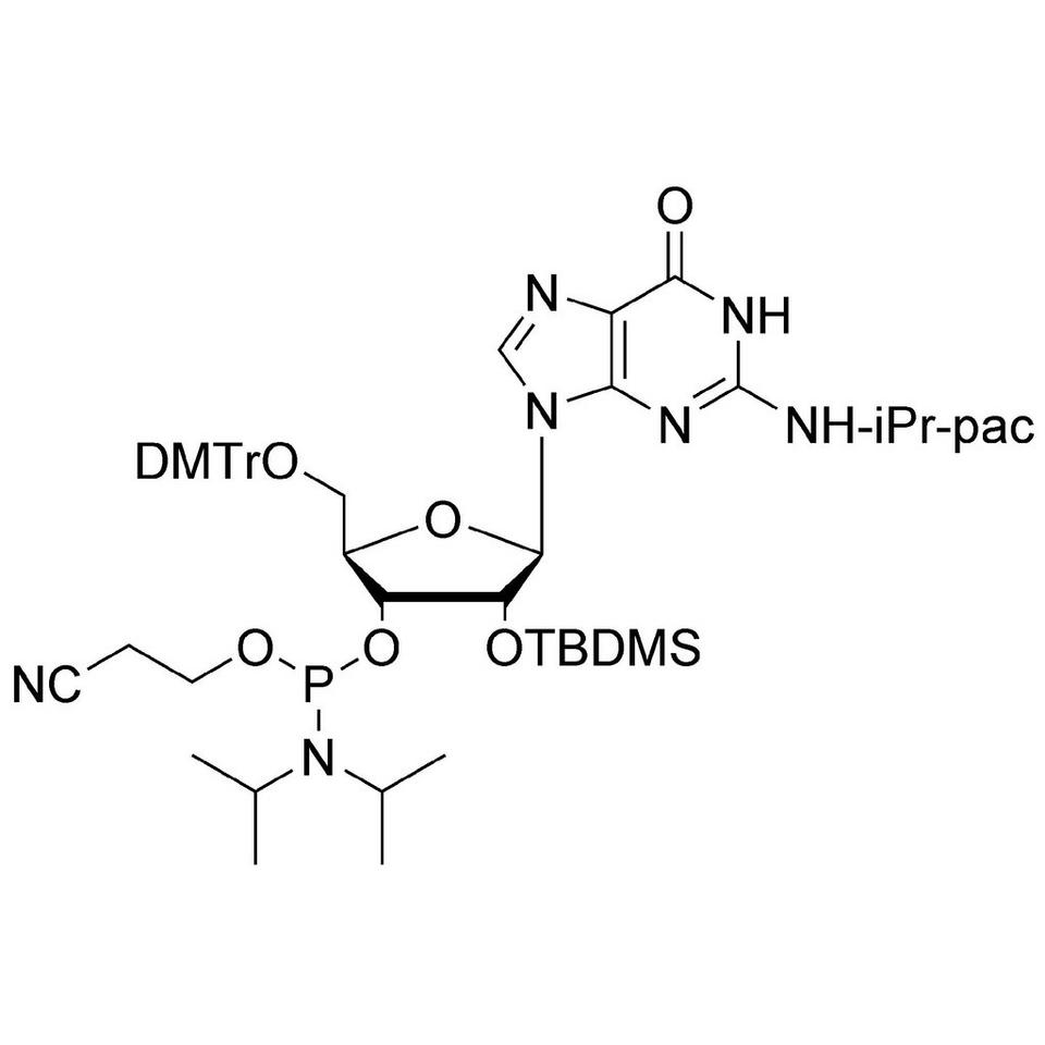 rG (iPr-Pac) CE-Phosphoramidite