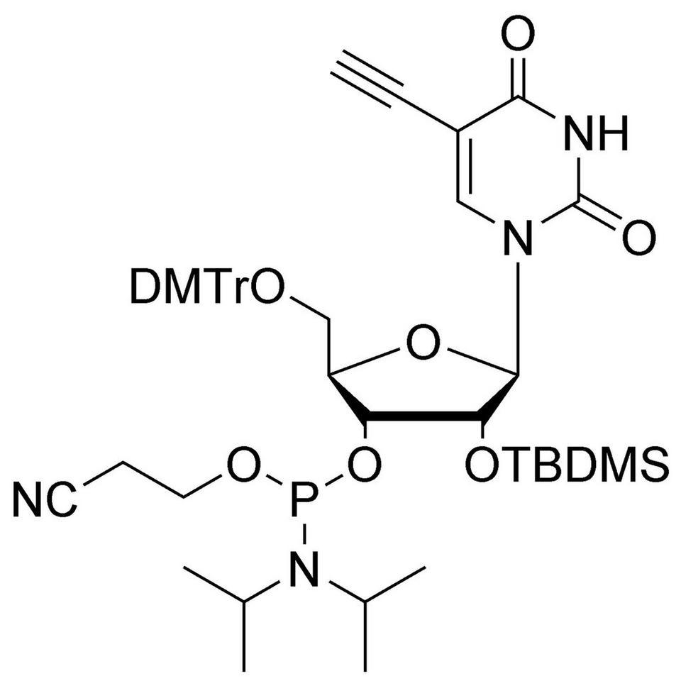 5-Ethynyl-Uridine CE-Phosphoramidite