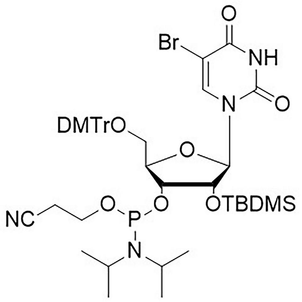 5-Br-U CE-Phosphoramidite