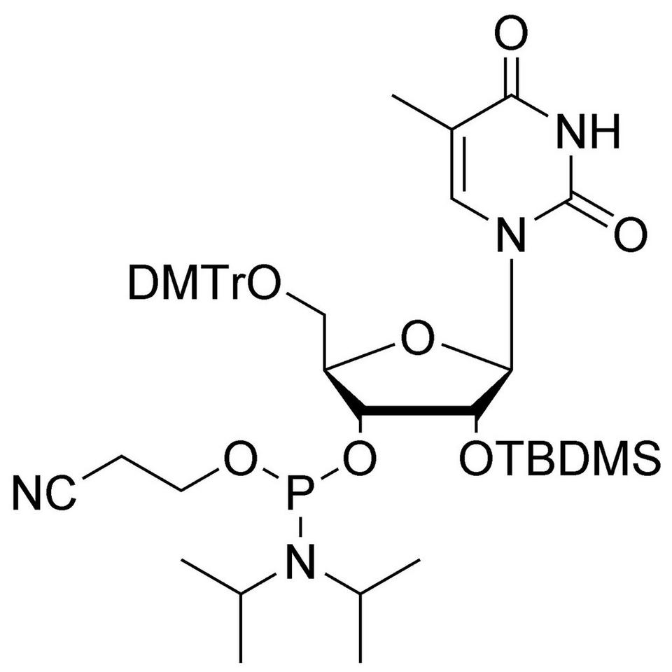5-Me-U CE-Phosphoramidite (ribo-T)