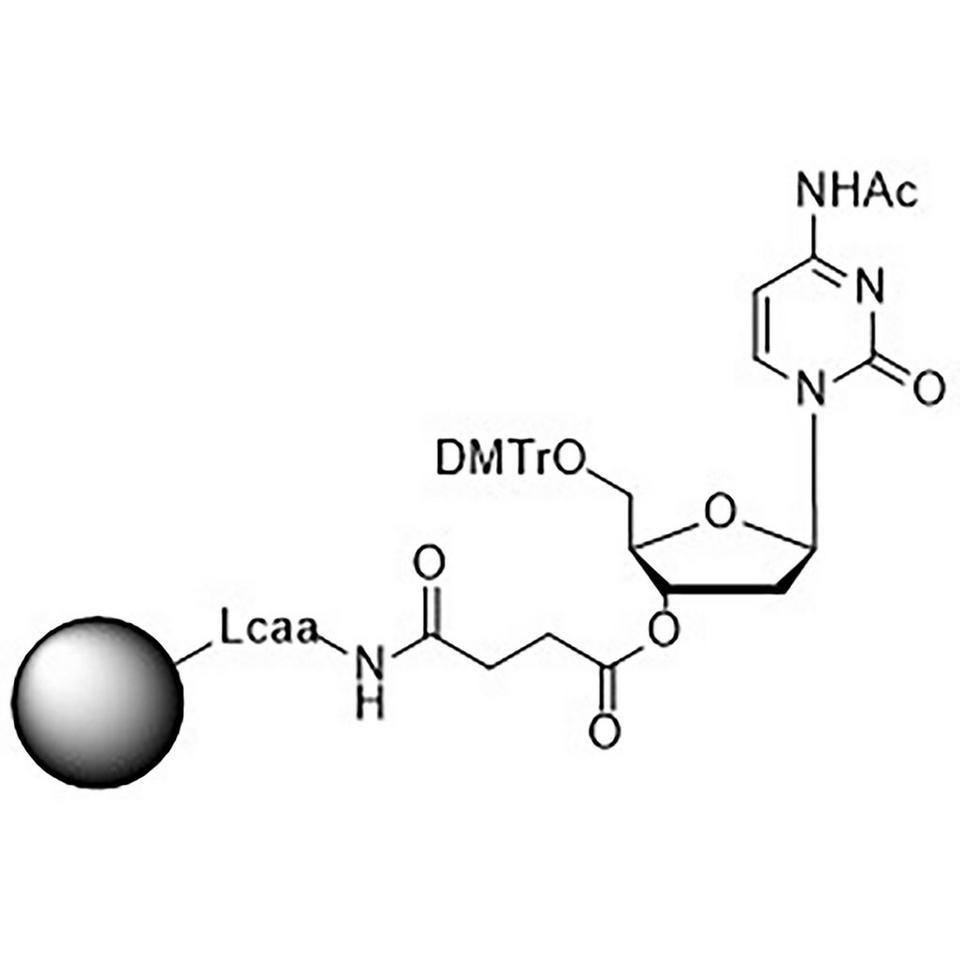 5'-DMT-dC (Ac)-Suc-CPG