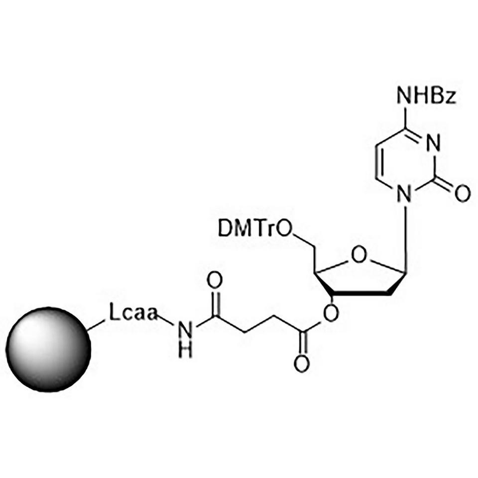 5'-DMT-dC (Bz)-Suc-CPG