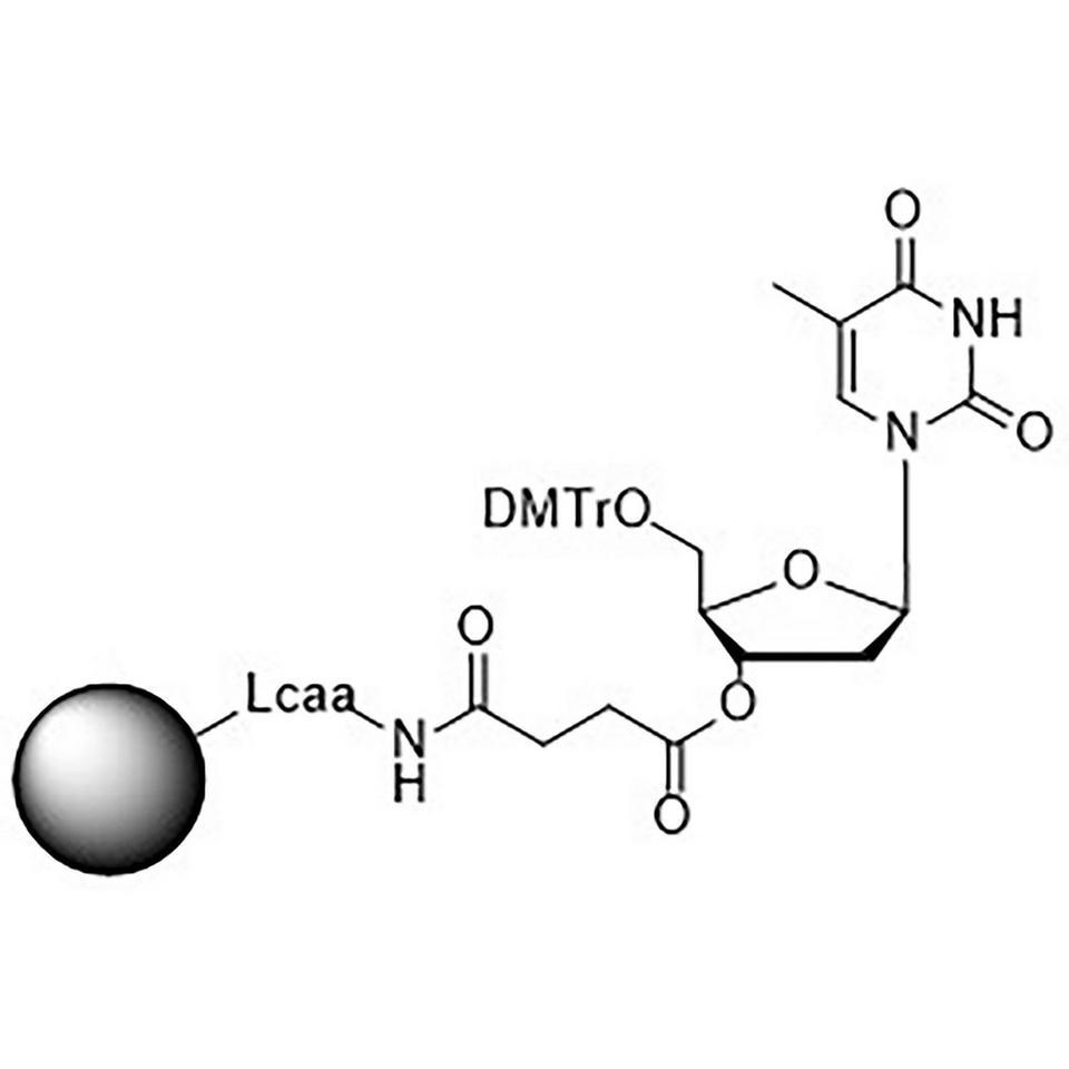 5'-DMT-T-Suc CPG Column