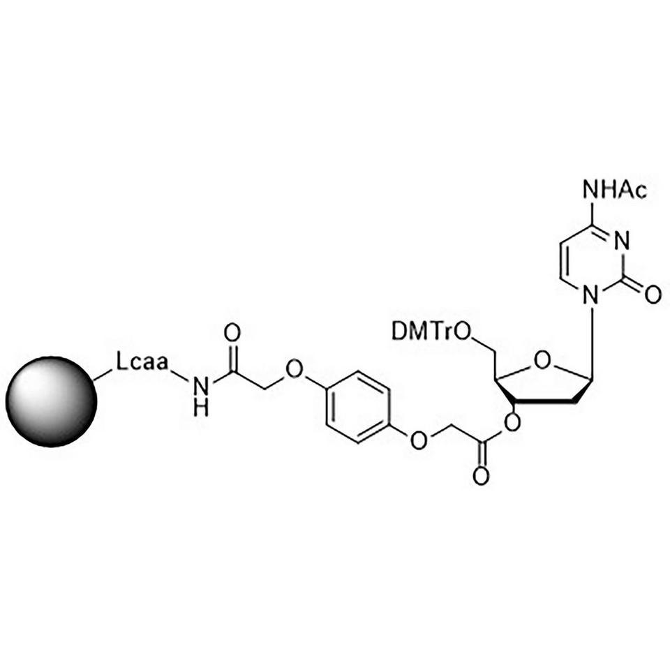 5'-DMT-dC (Ac)-3'-Q Linker CPG, 1000 Å, Standard Loading, 1 g