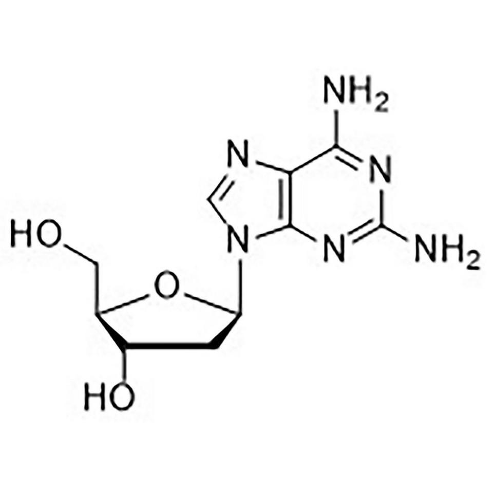 2-Amino-2'-deoxyadenosine