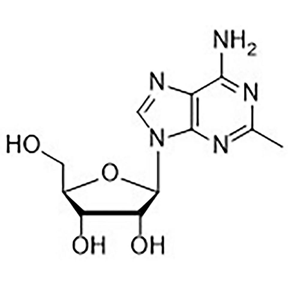 2-Methyladenosine