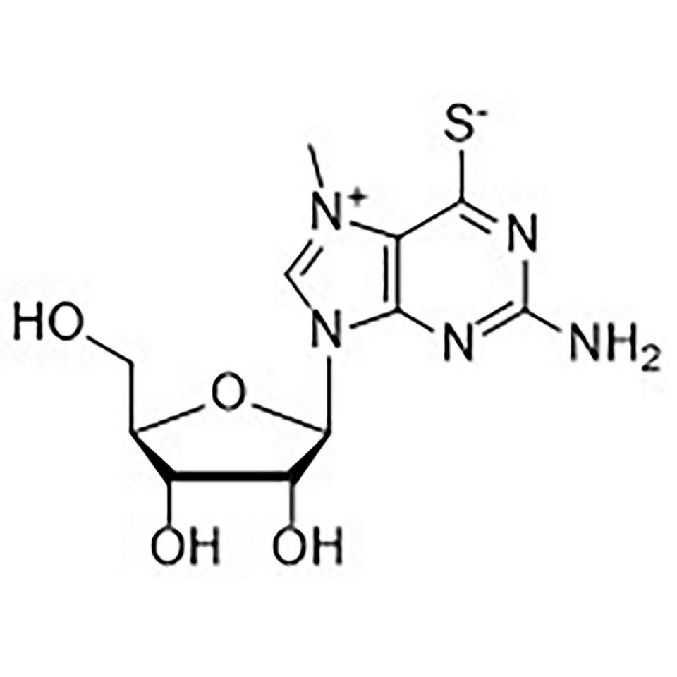7-Methyl-6-thioguanosine (MESG)