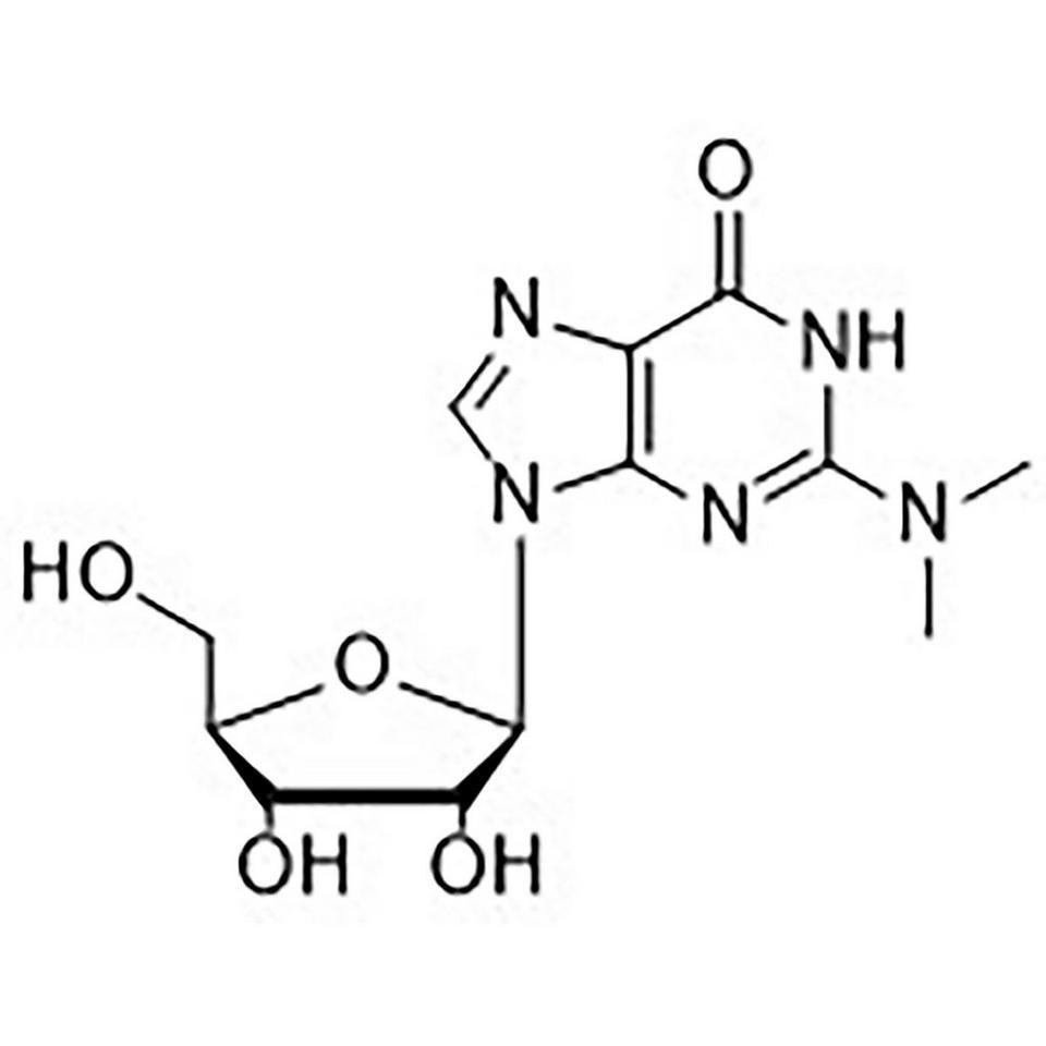 N2-Dimethylguanosine