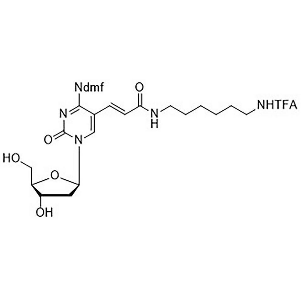 N4-[(Dimethylamino)methylidene]-5-[3-oxo-[[6-[(trifluroacetyl)amino]-hexyl]amino]-1-propenyl]-2'-deoxycytidine