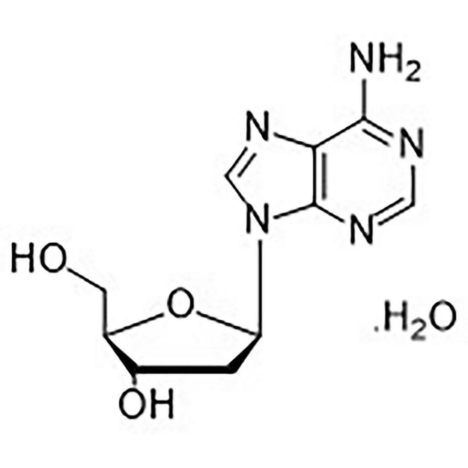 2'-Deoxyadenosine Monohydrate