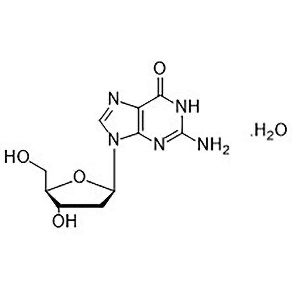 dG (2'-Deoxyguanosine Monohydrate)